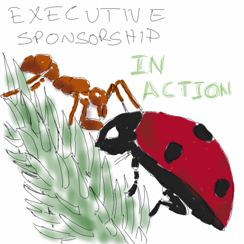 exec sponsorship insects